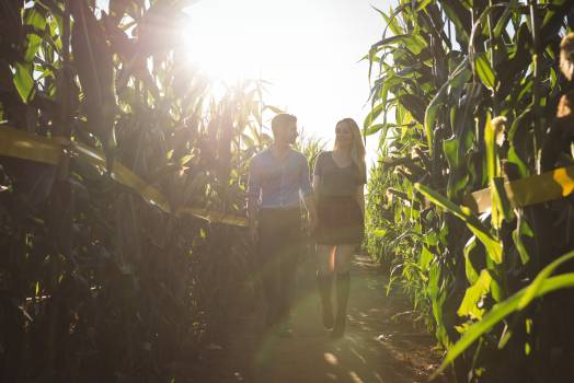Couple walking in field Free Photo