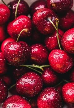 fruit #418884
