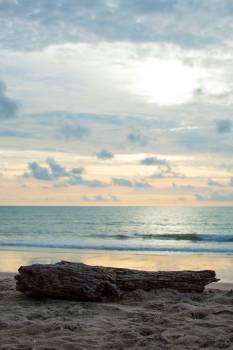 beach #419157