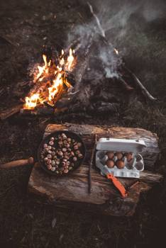 Barbecue Fire Flame Free Photo