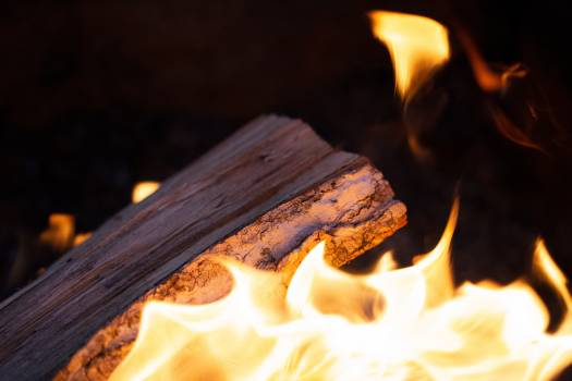 Campfire Wood Close up Free Photo #419273