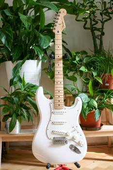 Electric guitar Guitar Stringed instrument Free Photo