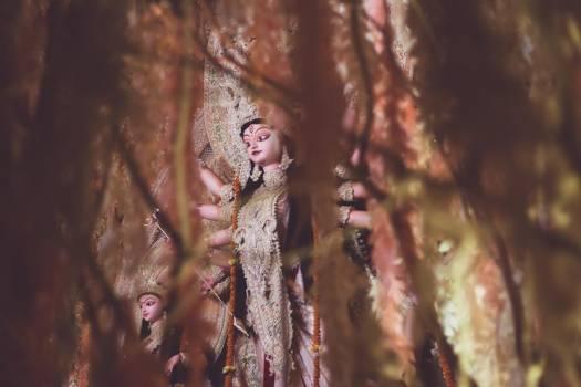 Indian War Goddess Durga Visible Through A Curtain Of Vines #419425
