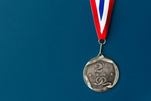 Hanging Second Place Medal #419469