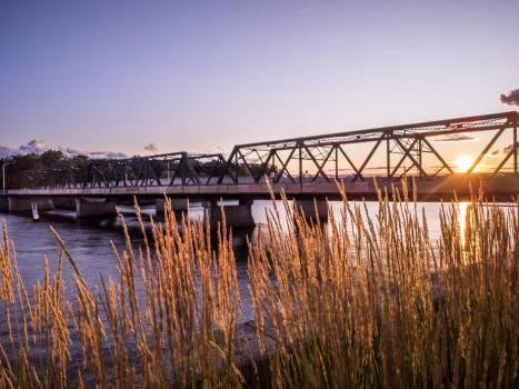 Golden Crops and Metal Bridge At Dusk #419474