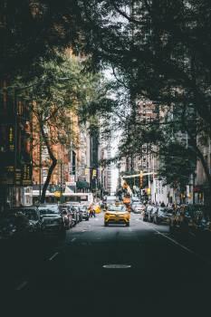 Yellow Cab Drives Through City #419484