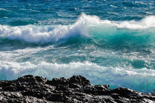 ocean #419629