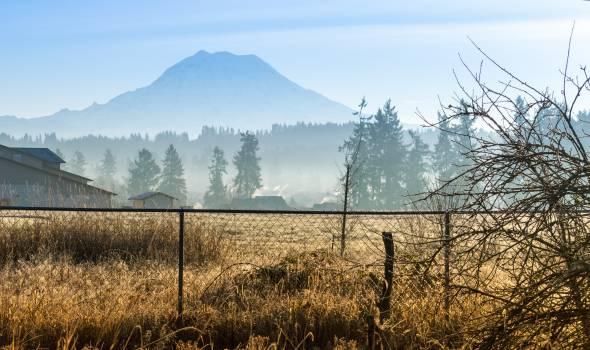 fence Free Photo