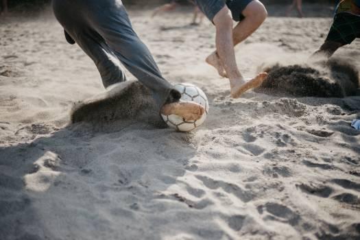 Beach Sand Dove #420194