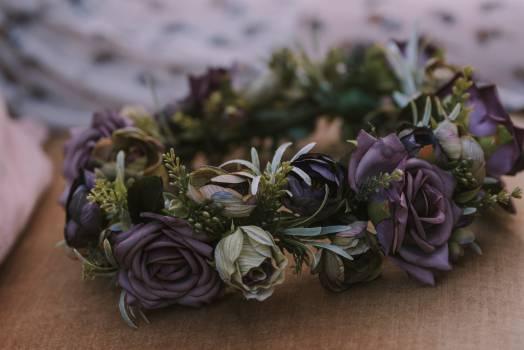 Bouquet Flower arrangement Arrangement Free Photo