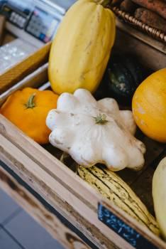 Squash Vegetable Spaghetti squash Free Photo