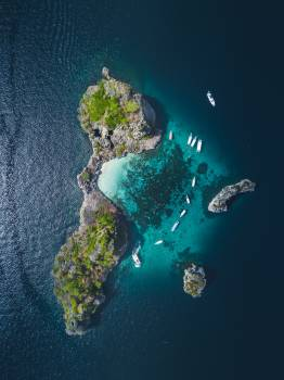 Reef Sea Coral reef #420332
