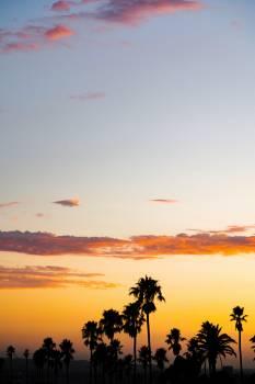Sun Star Sunset #420395