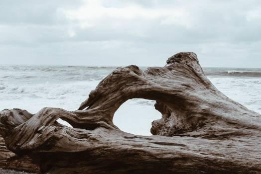Sea Rock Ocean #420882