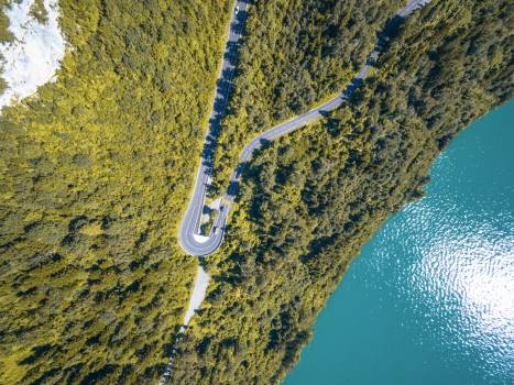 Aerial View of Curved Road Between Green Leaf Trees Near Ocean Free Photo