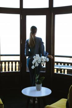 Orchid and Woman by Window Free Photo Free Photo
