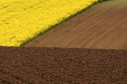 Minimalist Colorful Field Photo - Free Image For Commercial Use #421169