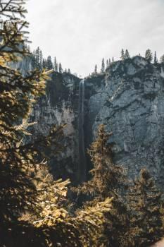 Snow Tree Mountain #421470