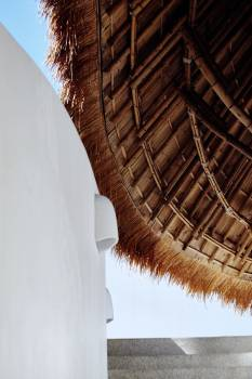 Thatch Roof Protective covering Free Photo