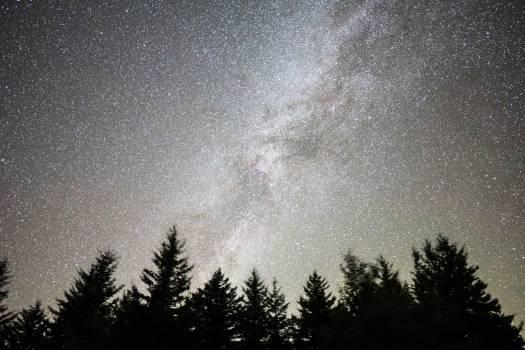 Star Texture Grunge Free Photo