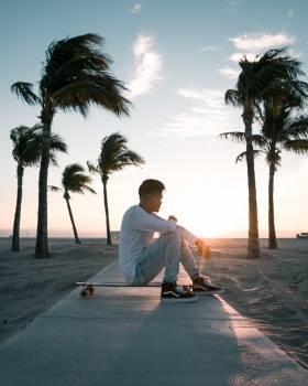 Beach Palm Sand #421537