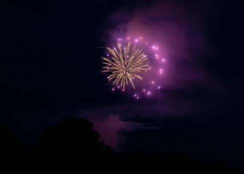 Firework Explosive Fireworks #421626