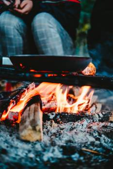 Barbecue Fireplace Fire Free Photo