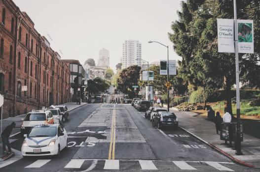 Grey Concrete Road and Pedestrian Lane #42178