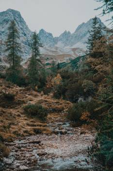 Mountain Range Landscape #421887