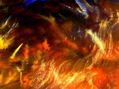 Fractal Art Digital Free Photo