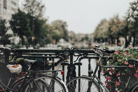 Bicycle Bicycle seat Seat Free Photo