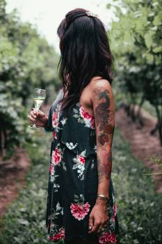 Woman in Vineyard Free Photo #422154