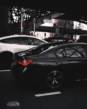 Car Auto Automobile Free Photo