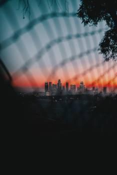 Night Light City Free Photo