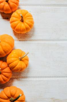 Line Of Pumpkins #422613