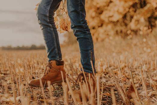 Hay Cowboy boot Boot #422725