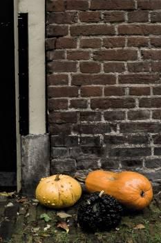 Pumpkin Vegetable Produce #422817