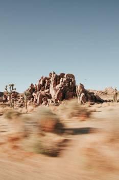 Camel Ungulate Landscape Free Photo