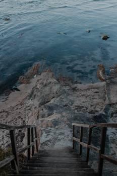 Sea Ocean Coast #423209