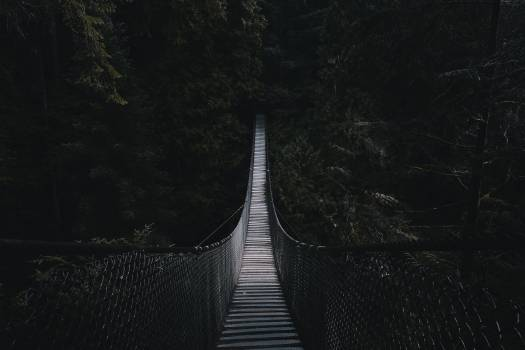 Suspension bridge Bridge Structure #423278