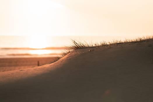 Dune Sand Desert #423385