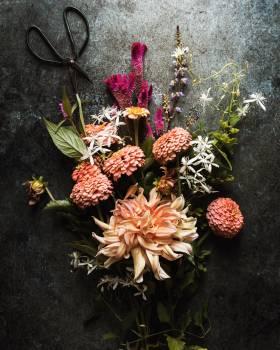 Bouquet Plant Pineapple #423405