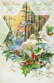 Vintage Christmas Postcard Depicting Star and Holly from The Miriam and Ira D. Wallach Division of Art, Prints and Photographs. Original from The New York Public Library.  #423497
