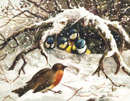 Vintage Christmas Postcard Depicting Birds in Snow (ca. 1800–1900). Original from The New York Public Library.  #423499