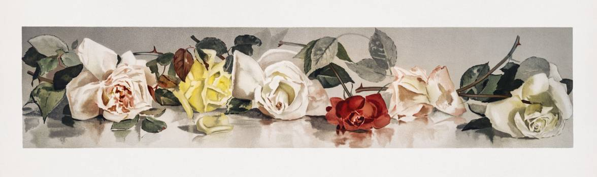 Christmas Roses (1865–1899) by L. Prang & Co. Original from The New York Public Library.  #423536