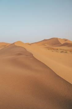 Dune Sand Desert #423584