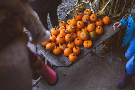 Fruit Edible fruit Citrus Free Photo
