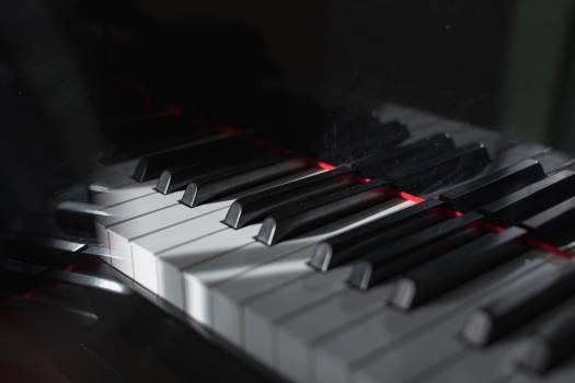 Grand piano Piano Keyboard instrument #423614