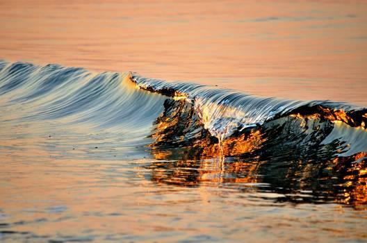 Water Ocean Sea #423791