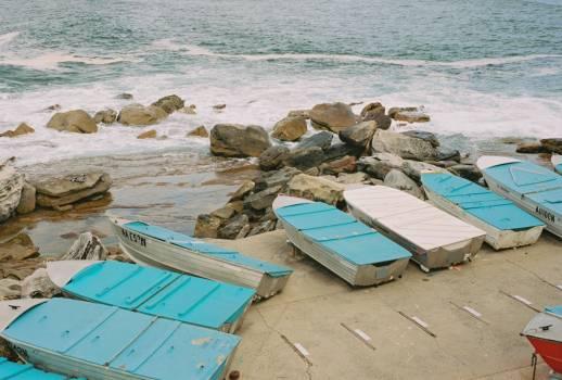 Sea Beach Ocean Free Photo